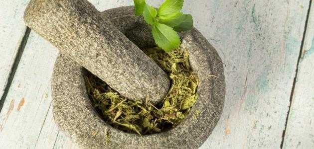 اعشاب الحمل